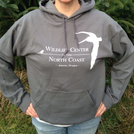 WCNC Logo Pull-Over Hoodie - $45