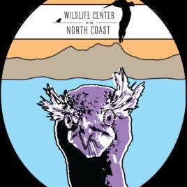 Cormie Sticker