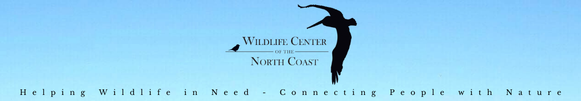 Wildlife Center of the North Coast